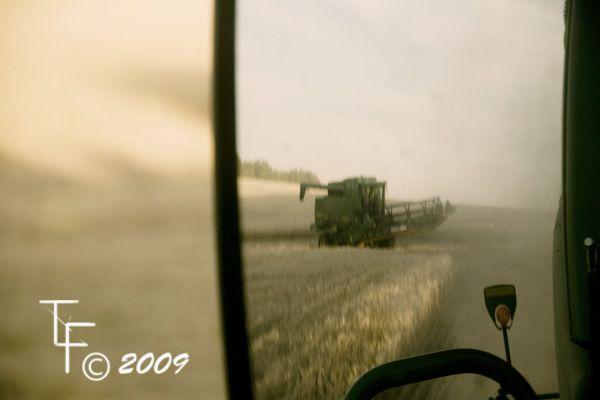 grain field blue sky wheat mirror combine