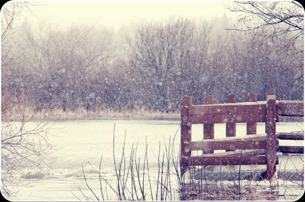 snow flood creek