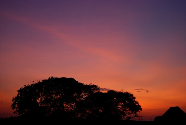 Sunrise, again.