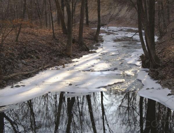 Shady Lane Creek II