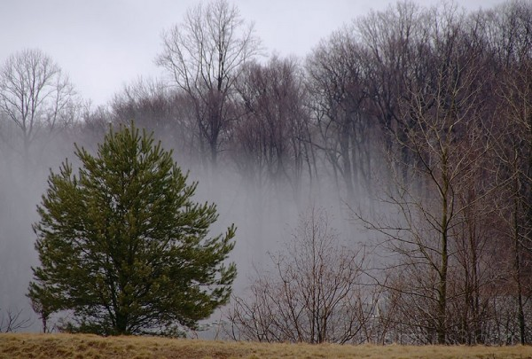 Stormy Morning
