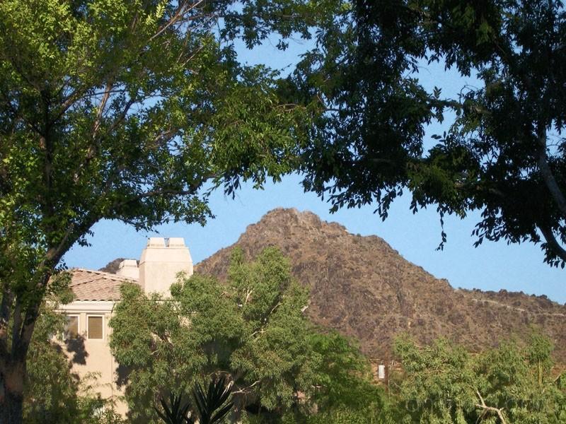 Arizona 2 (2005)