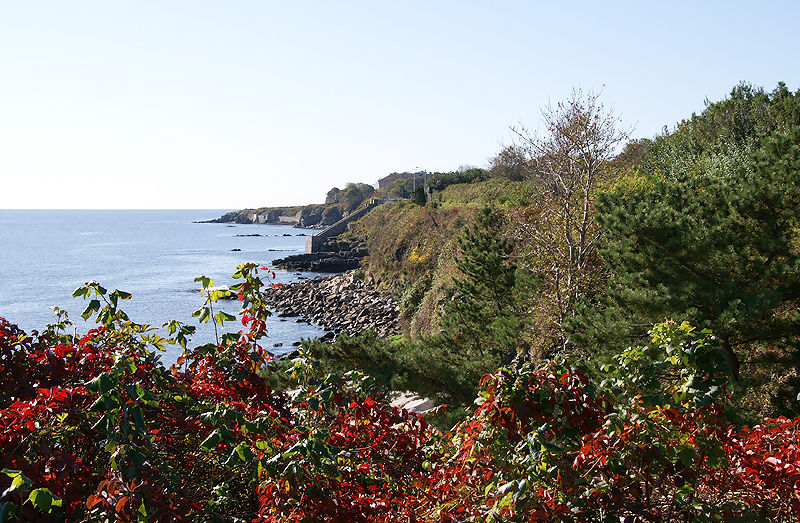 Cliff Walk - Forty Steps in the Distance