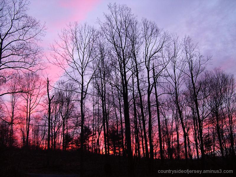 Swamp Road Sunrise