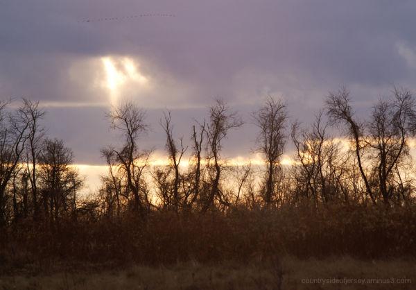 Merrill Creek Sunset