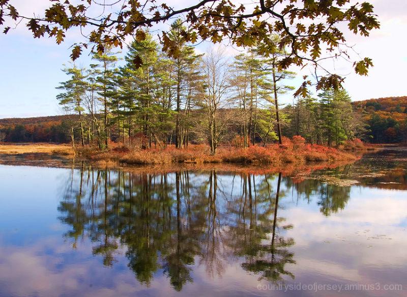 Islands in Harvard Pond II