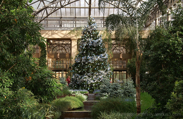 Large Blue Christmas Tree