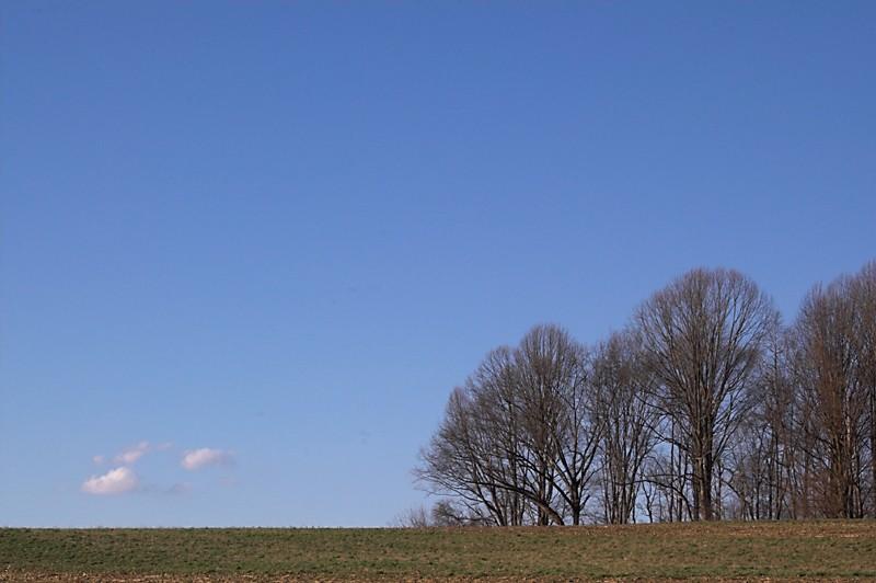 field farm rural