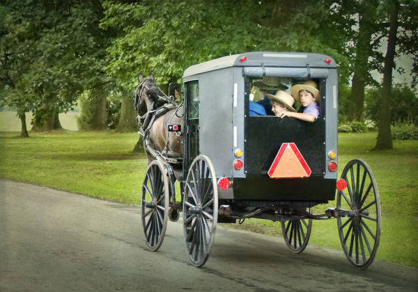 Amish Amish-Buggy Pennsylvania rural