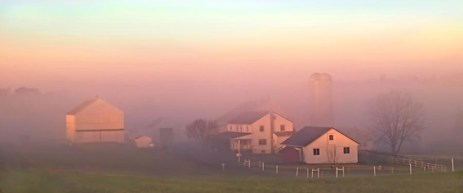 Foggy Morning on Farm