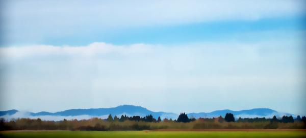 Willamette Valley View