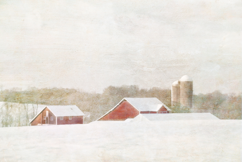 This is a tribute to [url=http://www.flickr.com/photos/jamieheiden/12505268793/] Jamie Heiden [/url].