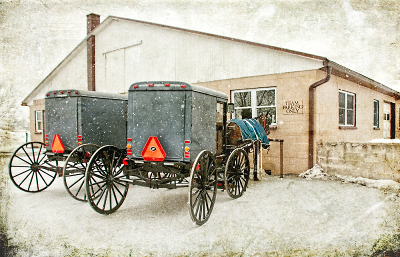 Amish Buggy at Store