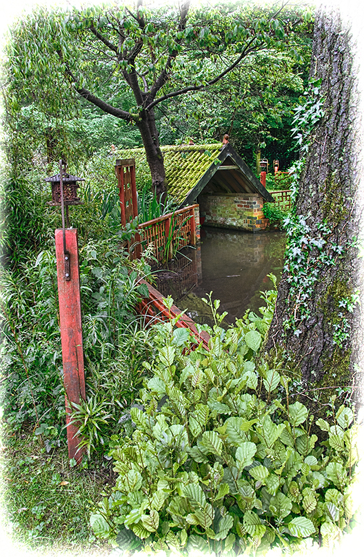 Woodbrooke Pond