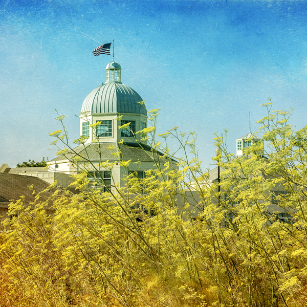 Suisun City City Hall