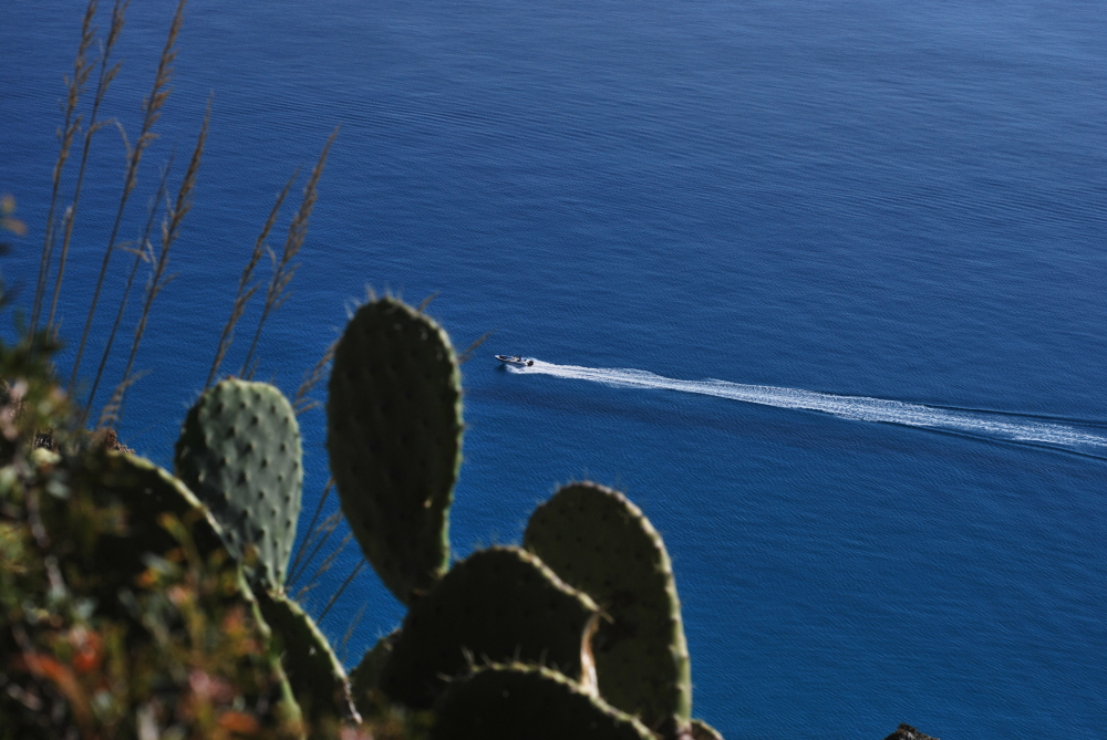 A speedy boat in the sea in front of Calabria