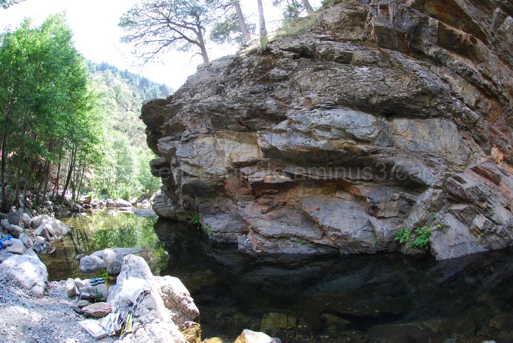 Rock in Aspromonte, southern Italy