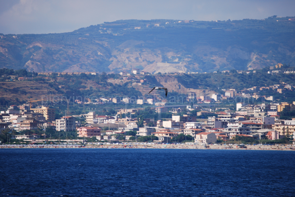 Bird flies over Reggio Calabria, Italy.