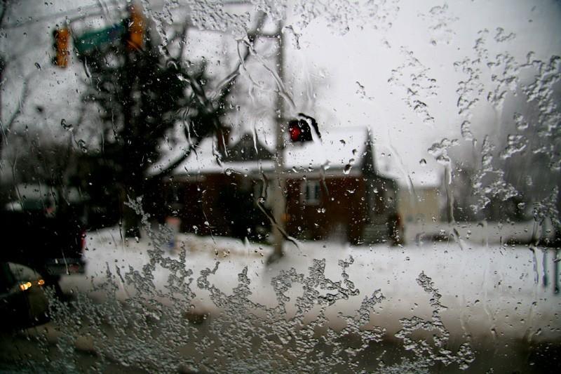 Shotgun Snowglobe