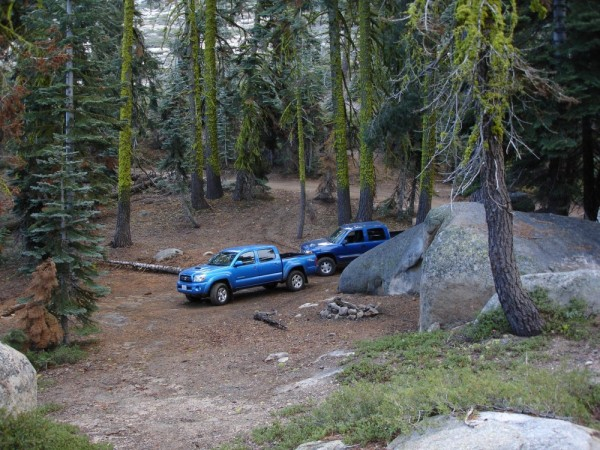 Trucks in the forest
