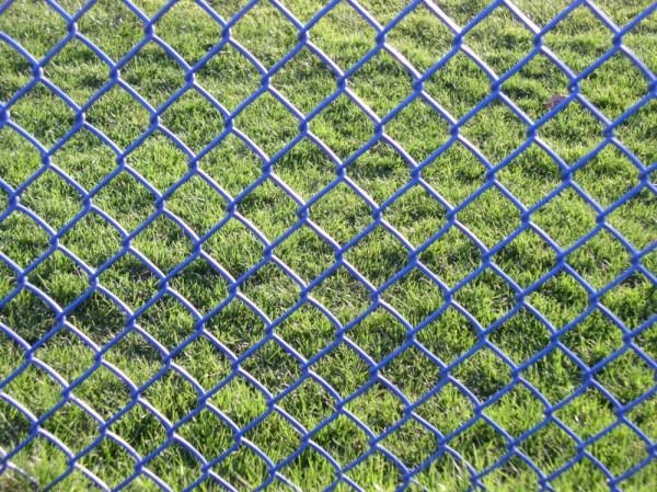 field through fence