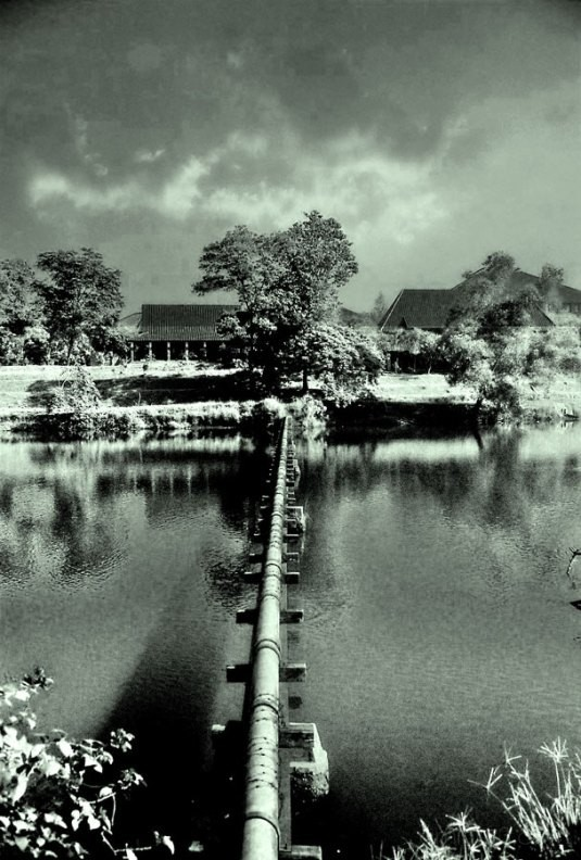 taken by Braun DN 60, negatif film kodak 200