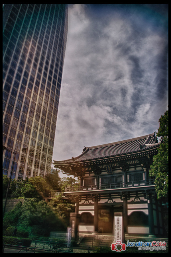 Tokyo contrast