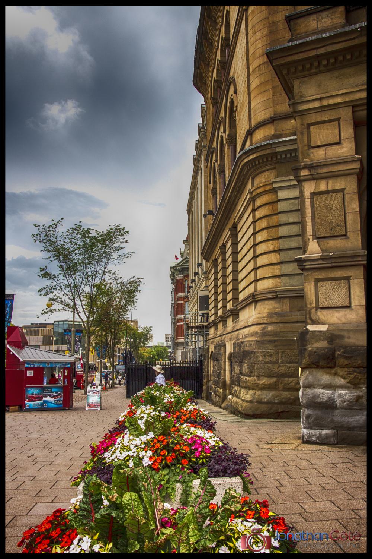 Ottawa , fleurs et béton / flowers and concrete