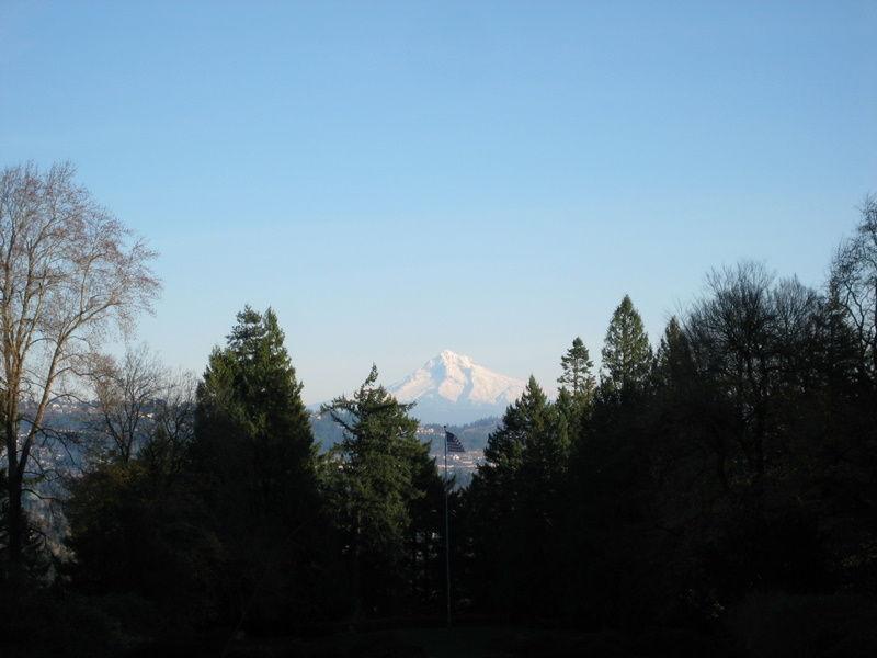December Mountain