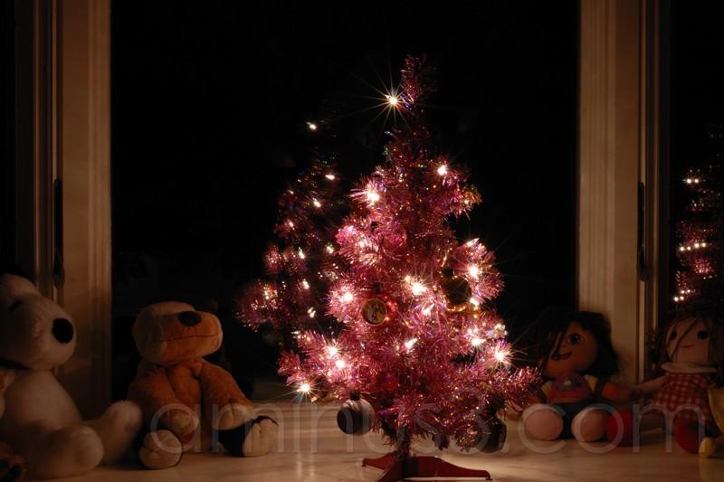 m's tree