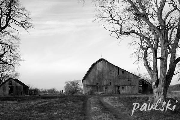 rural ii