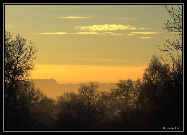 petit matin d'hiver / early morning in winter