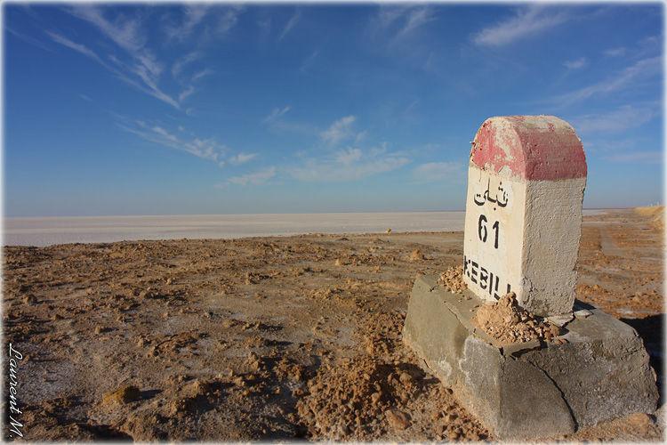 Chott el Djerid en Tunisie