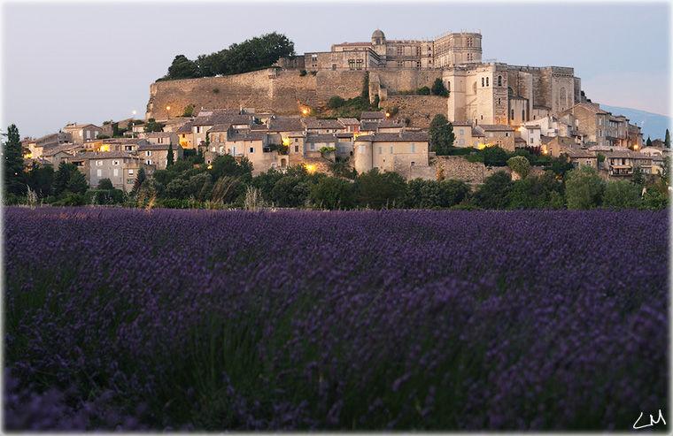 grignan en drôme provençale et ses lavandes