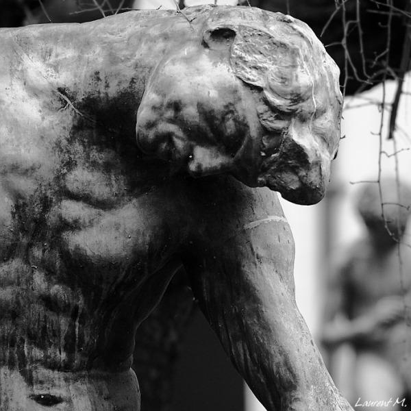L'ombre ou Adam, Rodin, palais saint pierre lyon