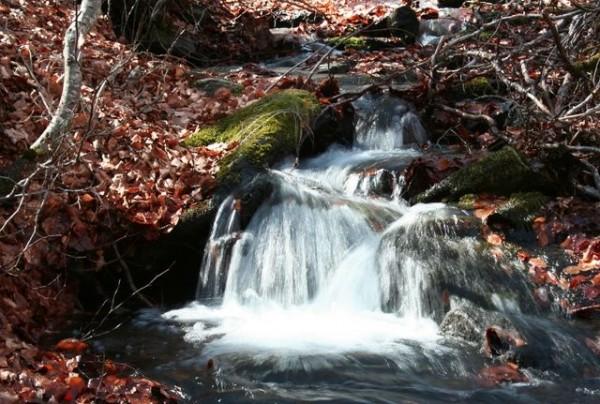 Salto de agua
