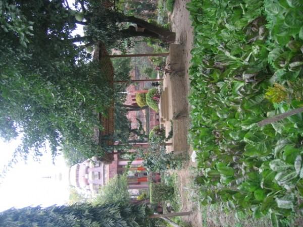 Santosh Puri Ashram