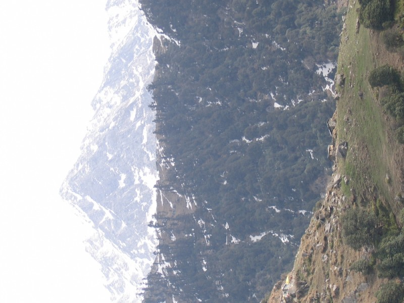Triund Trek - Indian Himilayan Foothills