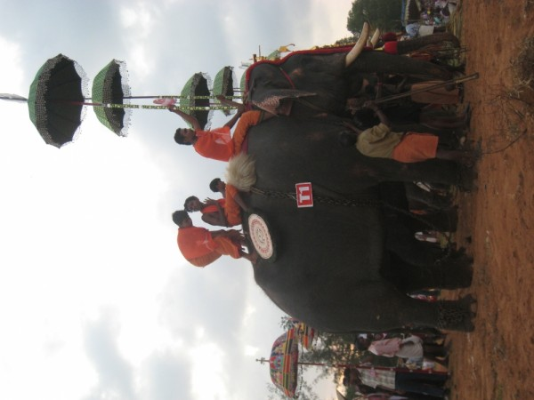 Festival in Kollam