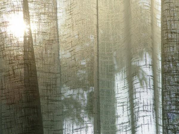 00241::Curtain