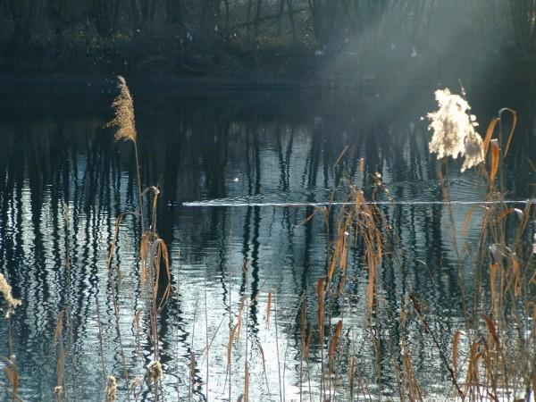 00256::River Adda