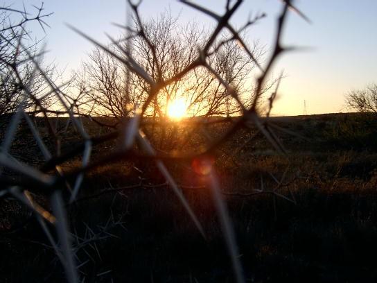 Sunset in Karoo