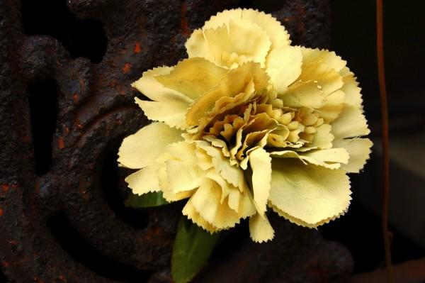 Perpetual flower