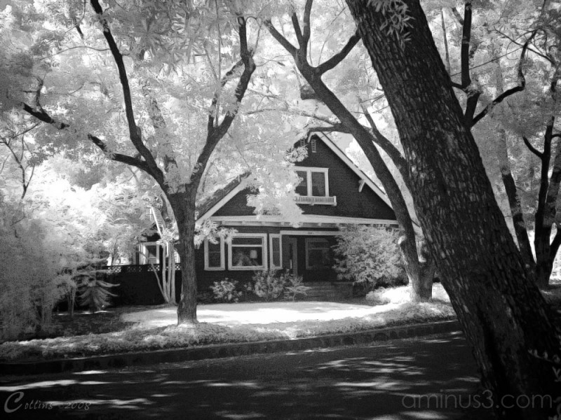 Infrared House Claremont California