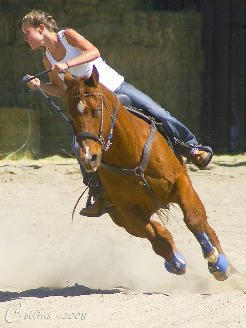Prado Equestrian Event