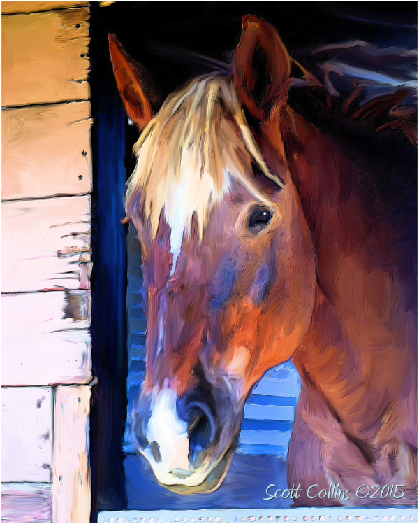 Dolly in Stall Painted