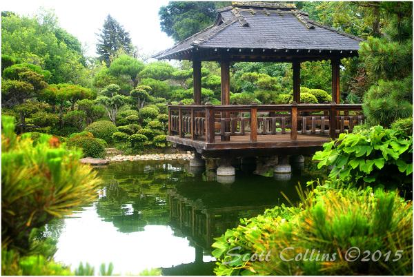 Japanese Gardens 02