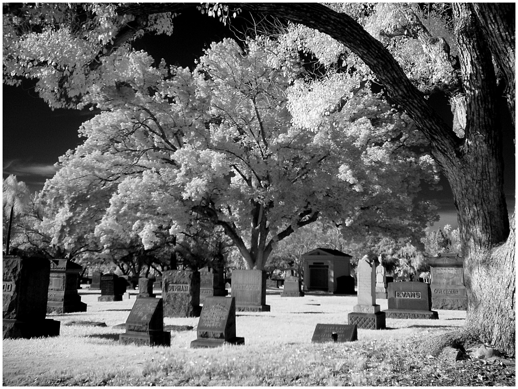 Infrared Photo of Cemetary