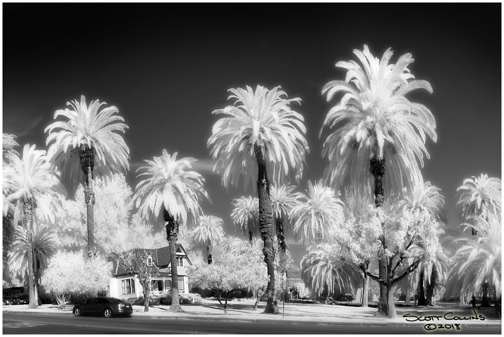 Infrared San Antonio Heights