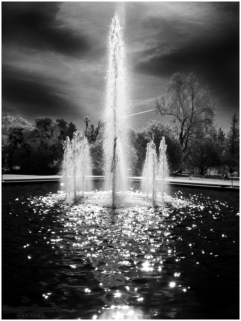 Infrared, LA Arboretum